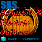 Acoustic & Electric Guitars