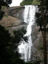 Photo: The Palaruvi falls - what a beautiful site it was - some distance from Courtallam we drove there on Sunday afternoon - had to cross over to Kerala to experience this one.