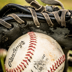 Baseball and glove by David Kreutzer - Artistic Objects Other Objects ( baseball, glove )