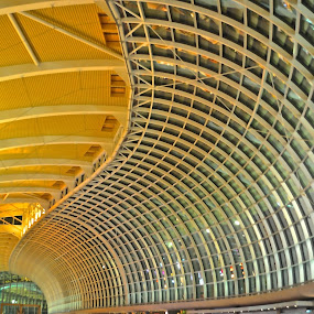 Marina Bay Sands Interior by Alvin Cheah - Abstract Patterns ( pwccurves, pwclines )