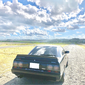 スカイライン HR31 GTS-R のカスタム事例画像 Red & Blueさんの2020年09月01日23:07の投稿
