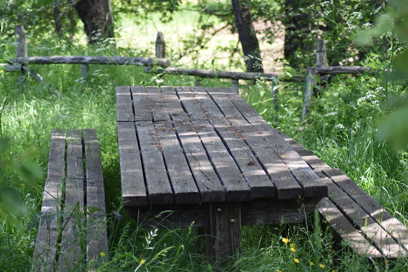 Table and nature di Paco9165