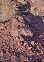 Photo: Half buried petrified log.