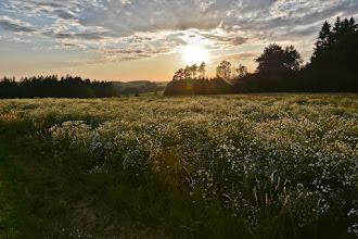 Photo: Słońce coraz niżej.