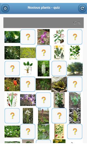 Noxious plants - quiz