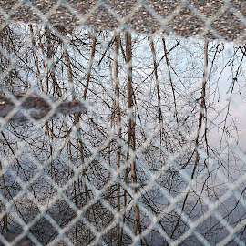 Conquered by Julio Cardona - Abstract Patterns ( sky, gravel, art, reflections, alaska, clouds, scenic, water, fence, trees, abstract photography )