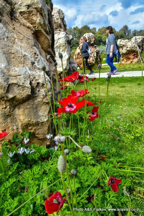 Экскурсия на Голанские высоты. На мемориале солдатам Армии Обороны Израиля погибшим при крушении вертолетов.