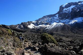 Photo: Towards Lava Tower Camp: vegetation shrinking!