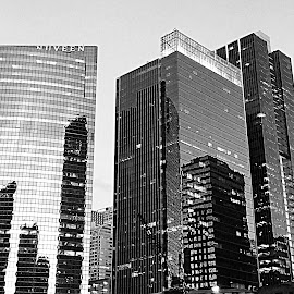 Chicago in Black and White by Lorna Littrell - Black & White Buildings & Architecture ( skyline, black and white, buildings, cityscape, architecture,  )