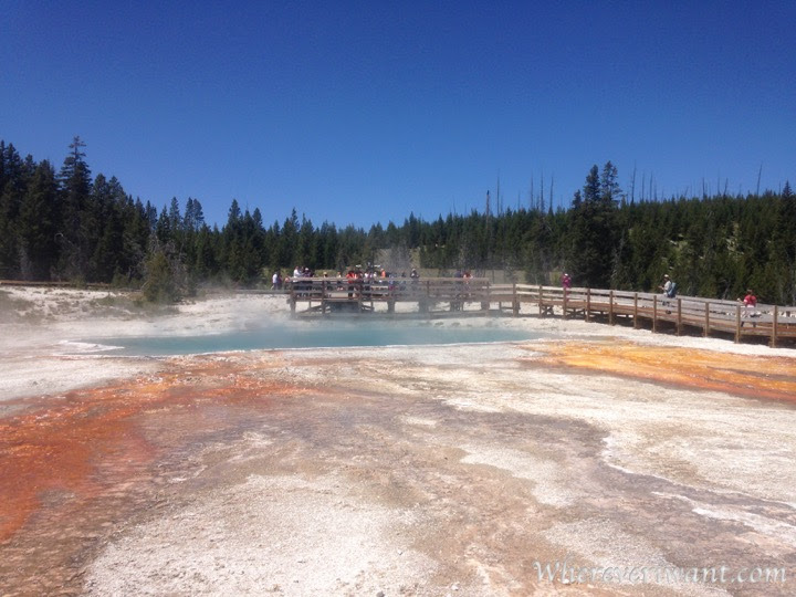 Everyone knows Old Faithful, but the other views are just as stunning!