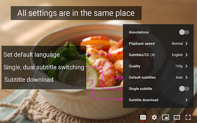 YouTube™ dual subtitles