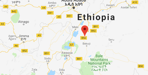 Four killed as protests spread in southern Ethiopian city