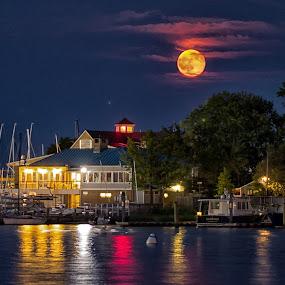 Full Moon by Carol Ward - City,  Street & Park  Vistas ( annapolis, moon rise, waterscape, chesapeake bay, full moon, annapolis city dock,  )