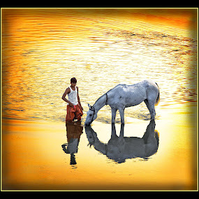Watering Hole by Sami Ur Rahman - Professional People Business People ( water, horseman, horse, reflections, evening light )