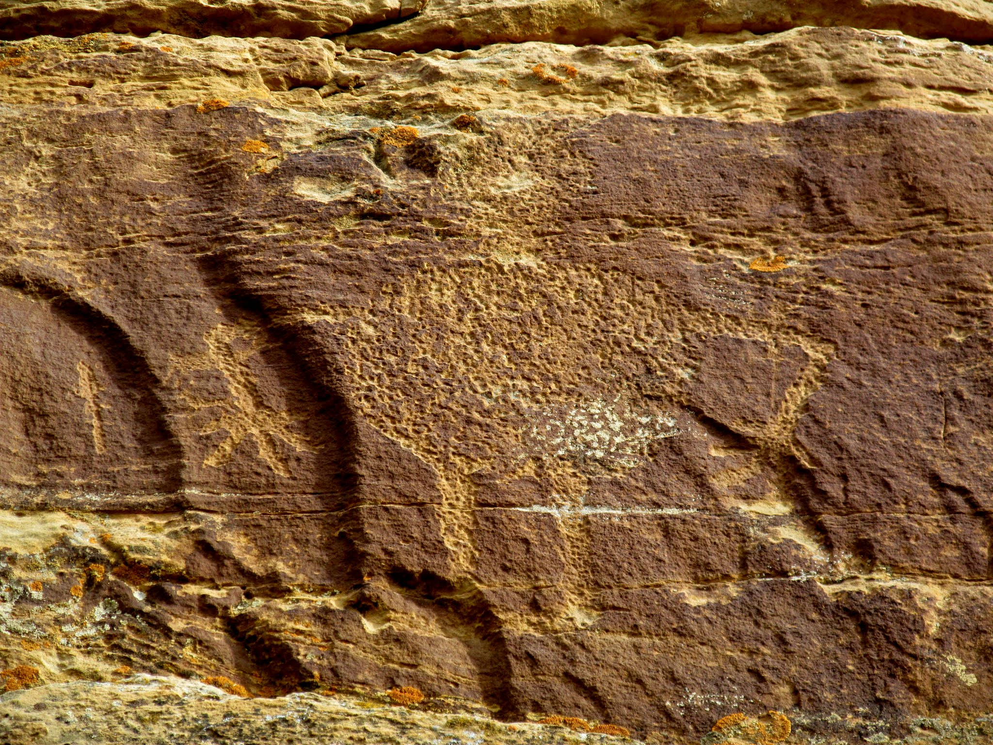 Photo: Large petroglyph high on the first cliff band