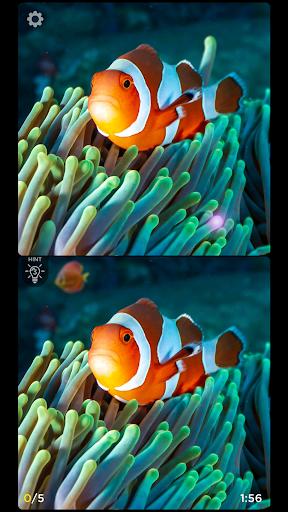 Spot the Difference - Insta Vogue 1.3.7 screenshots 4