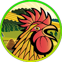 Rooster Fight Sim Multiplayer icon