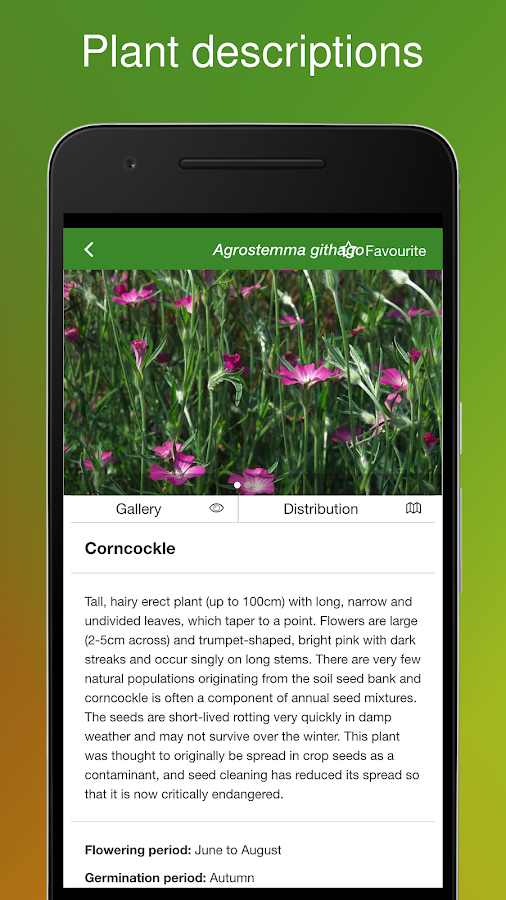 Rare Arable Flowers- screenshot