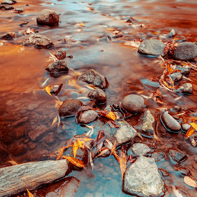 Red River by Ralph Sobanski - Landscapes Waterscapes ( water, red, canada, autumn, toronto, fall, leaves, rocks, river )