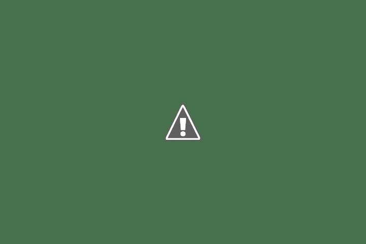 LAS NUEVAS EMBAJADORAS DEL FESTIVAL DE PEÑAS DE VILLA MARIA