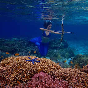 Archer Mermaid by Sergei Tokmakov - Uncategorized All Uncategorized ( archer, sexy, model, girl,  )