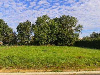 terrain à Curzon (85)
