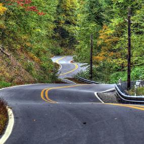 Somewhere in Pennsylvania by James Rudick - Transportation Roads ( pennsylvania, curves, road, autumn, landscape,  )