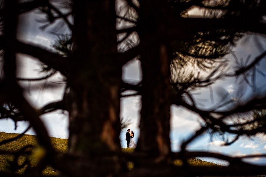 Wedding photographer Casian Podarelu (casian). Photo of 17.10.2016
