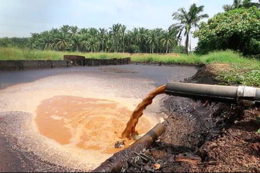 efluente de aceite de palma