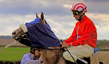 Photo: Eine Kapuze wird den Pferden übergestreift, die nicht in die Startbox gehen wollen. Sie verlieren dadurch die räumliche Orientierung.