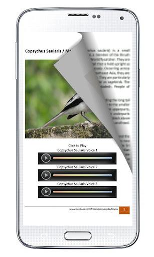 Bird Species Voice Library 1