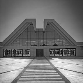 Paths we take by Goran Grudić - Black & White Buildings & Architecture ( rijeka, building, black and white, path, croatia, drenova )