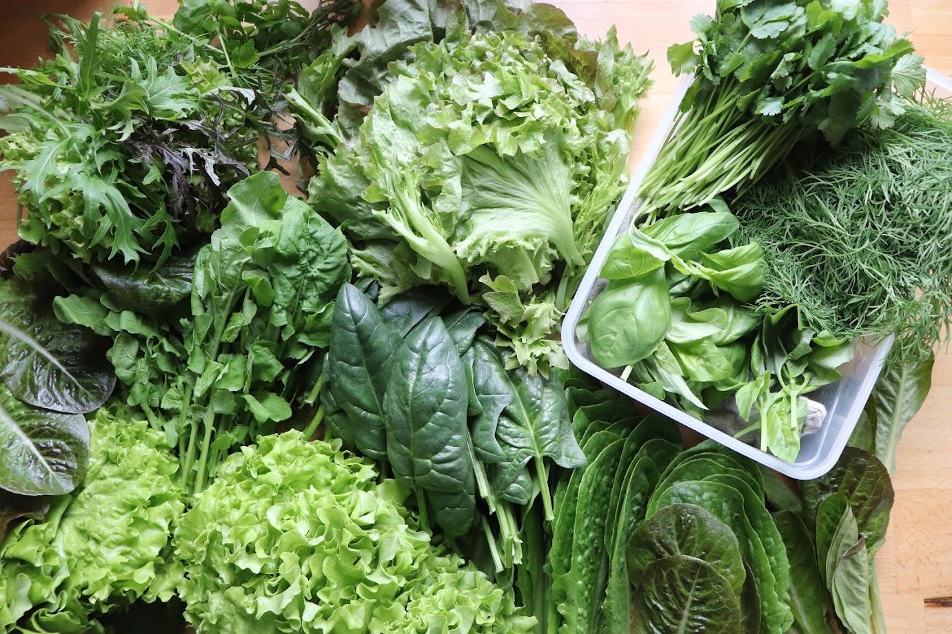 органические овощи купить киев