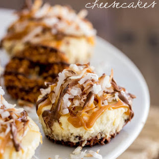 Mini Samoas Cheescakes
