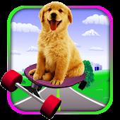 Dog on Skateboard Adventure