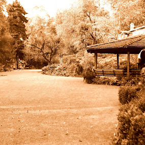 Peaceful getaway by Mathangi Jeypal - Buildings & Architecture Homes ( sepia, thatched roof, hut, peace, wide streets )