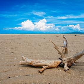 Treasure of Memories by Jon Gonzales - Landscapes Travel ( cagbalete, quezon, island )