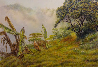 Photo: Janet Suffield : Tropical mist : 21 x 29cm