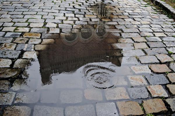 Specchio d'acqua di desideria maglione