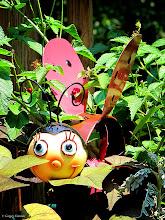 Photo: June 23, 2012 - Garden Ladybug #creative366project curated by +Jeff Matsuya and +Takahiro Yamamoto #under5k +Creative 366 Project