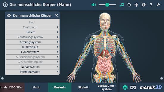 Der menschliche Körper (Mann) Bildungs-3D VR – Apps bei Google Play