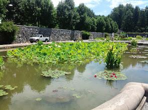 Photo: reflecting pool