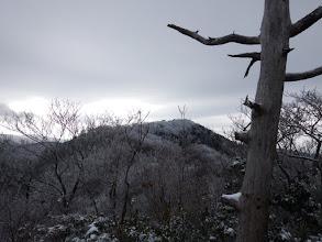 目の前に水谷岳(霧氷で白く)