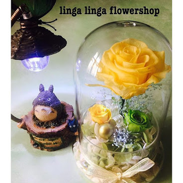 淡黃玫瑰花 好清新 好清新 和 龍貓一起 HK3xx 有意聯  photogridorg#doggy#flower#preservedflower#decor#decoration#home#wedding#结婚#婚礼#家居摆设#贈品#求婚 #shophk#hongkongonlineshop #hkshop #hongkong #hkgirl#hkflowershop#礼物#生日#初生B#花束#motherday#valentino day#不凋花#永生花#gift#birthday