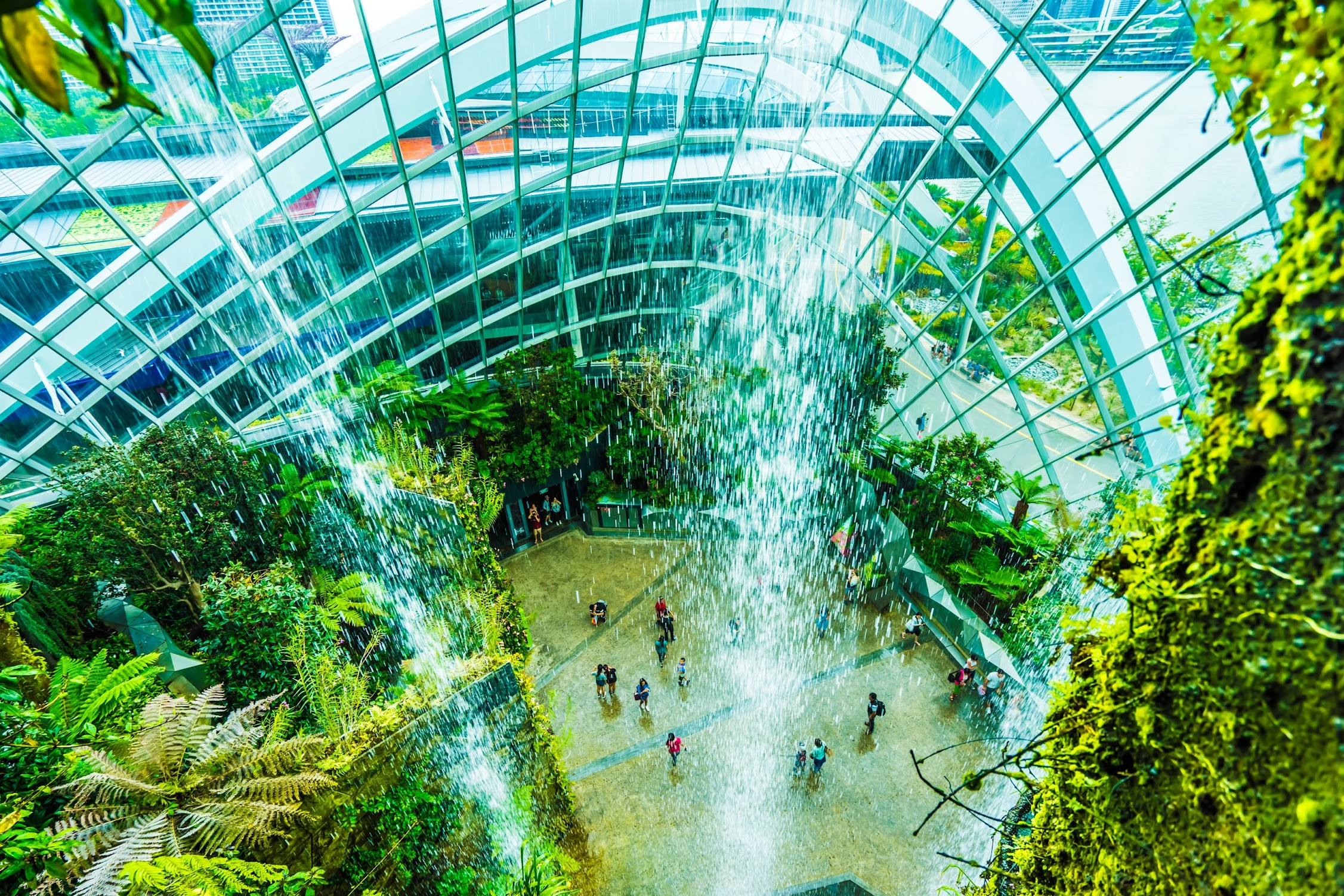 Gardens by the Bay Cloud Forest5