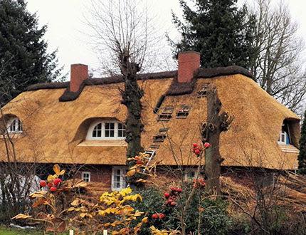 Jesienny ogród z dużym domem krytym strzechą w tle