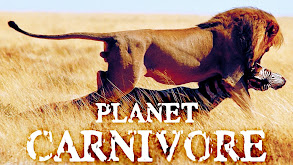 Planet Carnivore thumbnail