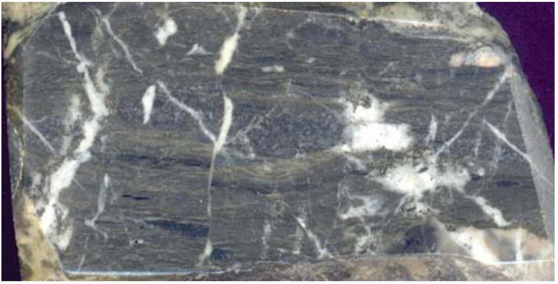 Carbonaceous chlorite-sericite metasomatite