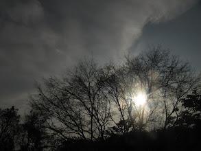 Photo: Sun comes always in foreground.