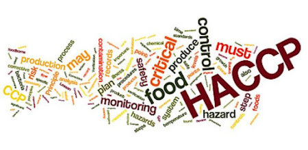 HACCP Light versus Full HACCP